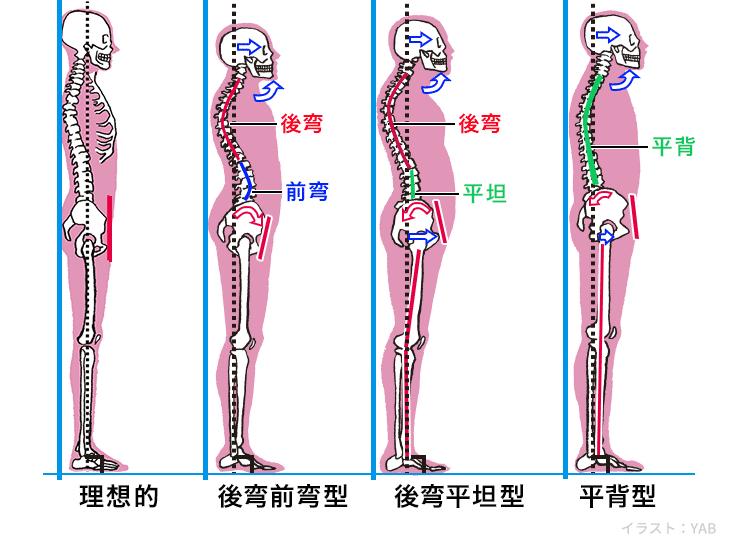 良い姿勢についての解説です